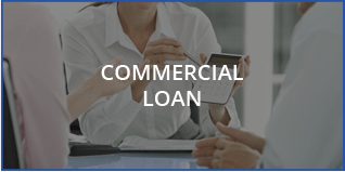 Commercial Loan